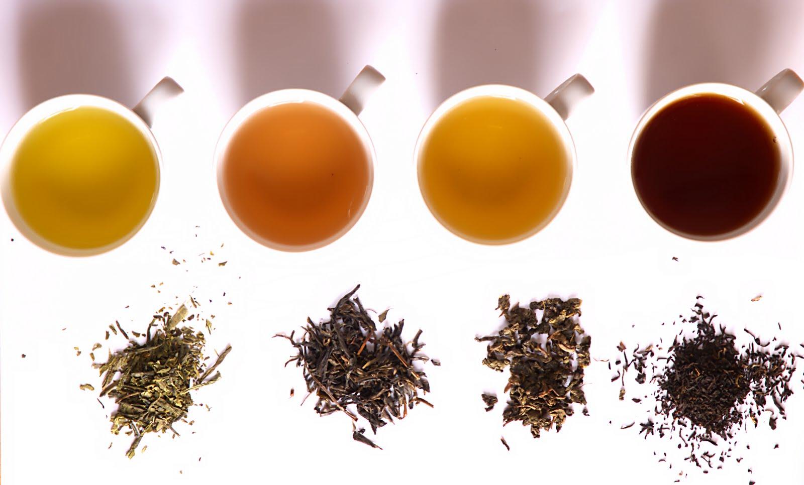 Zdravlje u šoljici čaja